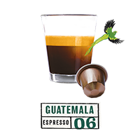 Single Origin Guatemala 6